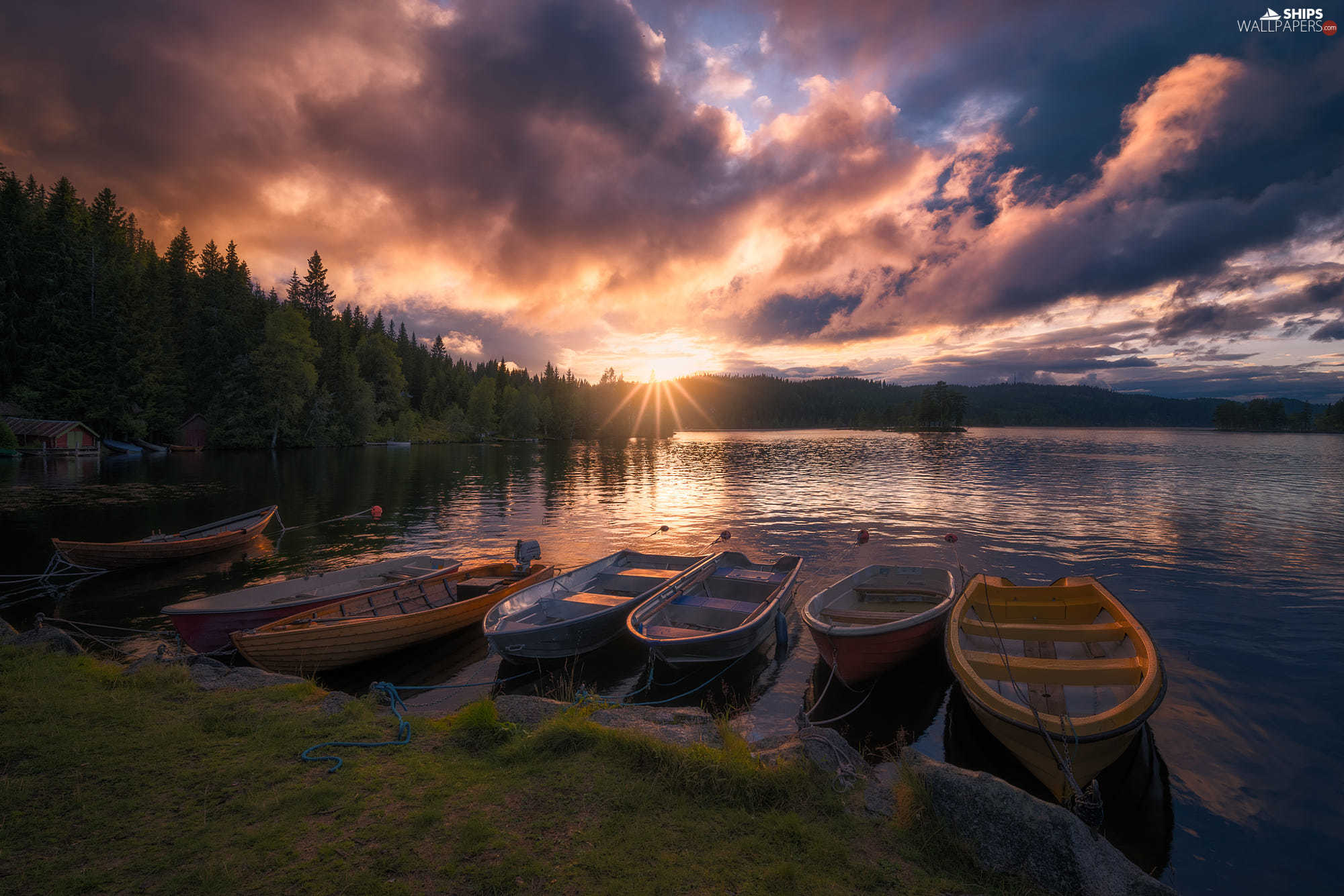 Great Sunsets, Lake Øyangen, viewes, boats, trees, Ringerike, Norway, forest