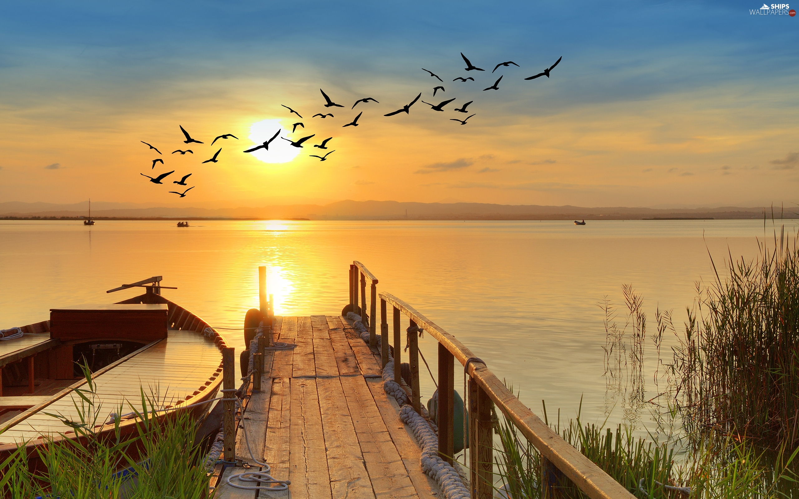 Platform, birds, Sunrise, boats, lake