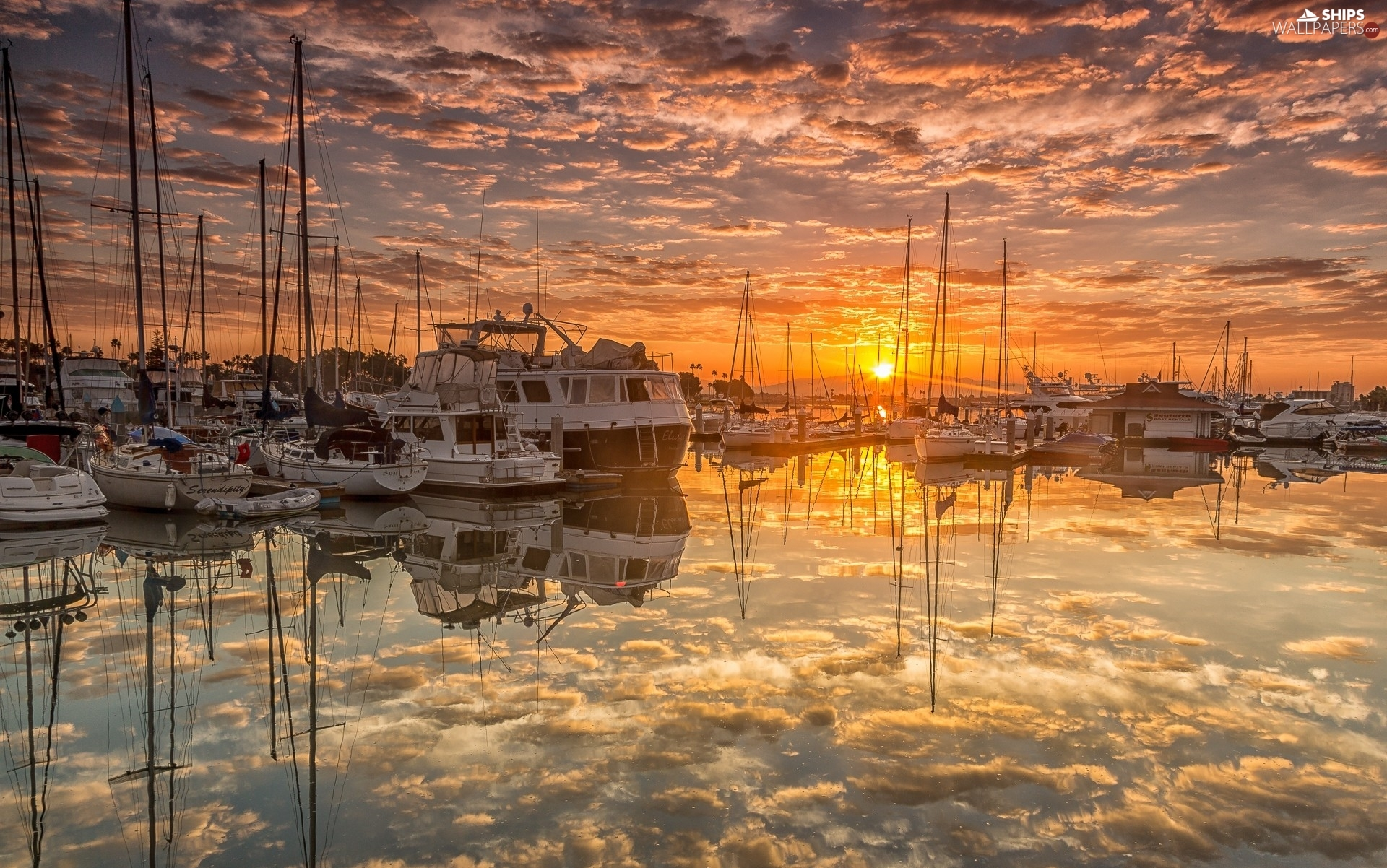 Harbour, Yachts, clouds, Sunrise, reflection, The United States, State of California, Sailboats, San Diego
