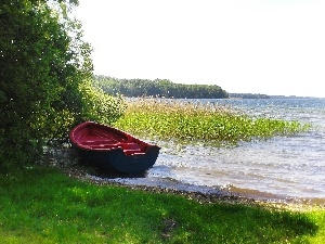 lake, rushes, coast, Boat