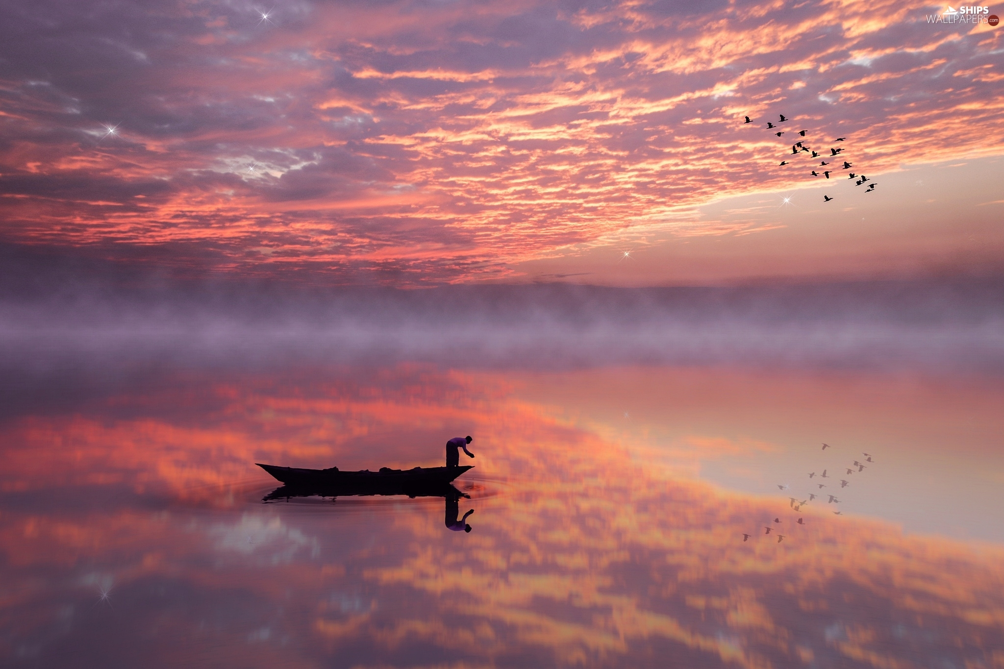 reflection, Great Sunsets, Fog, clouds, lake, Boat, birds