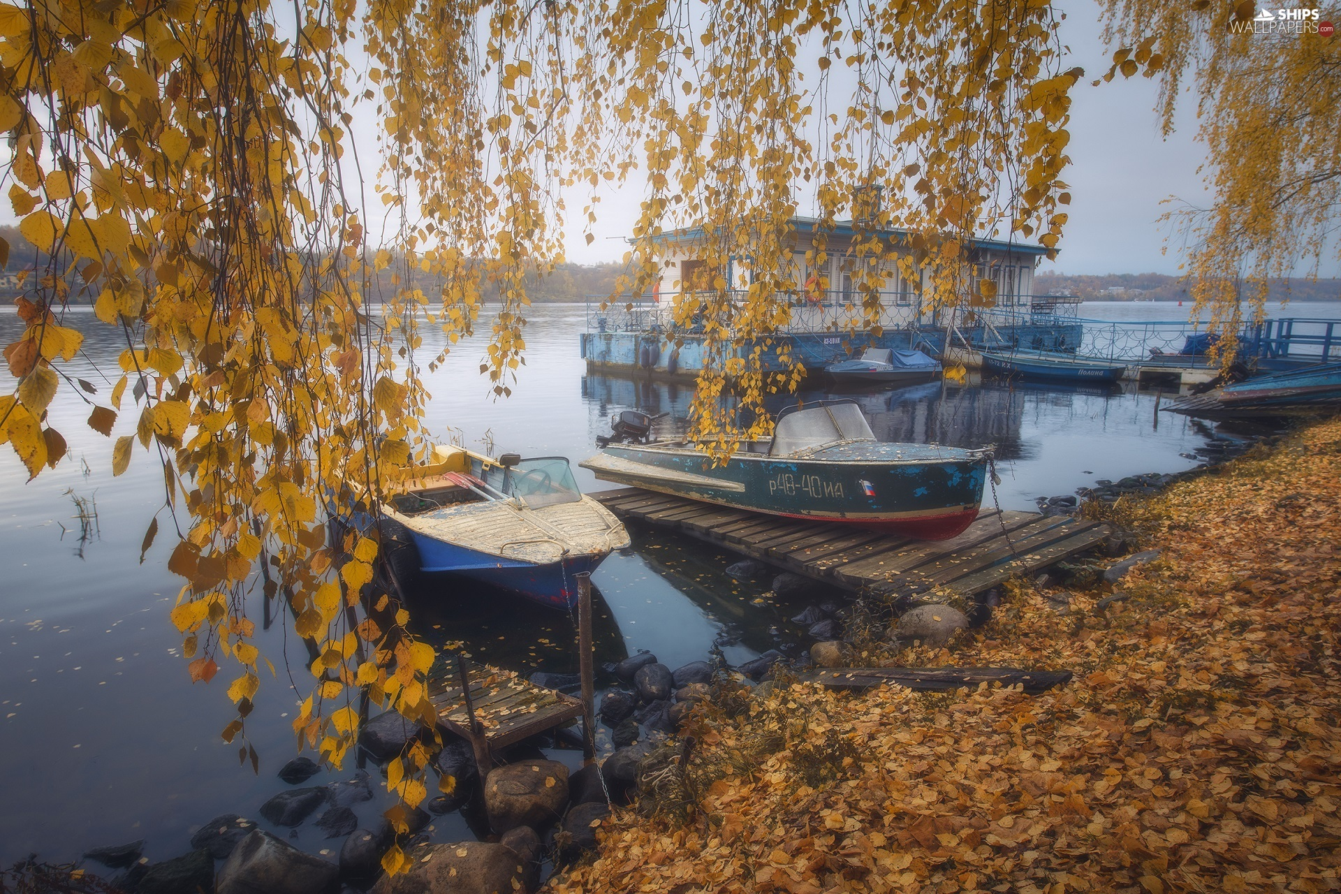 motorboat, lake, branch pics, birch-tree, autumn, Harbour