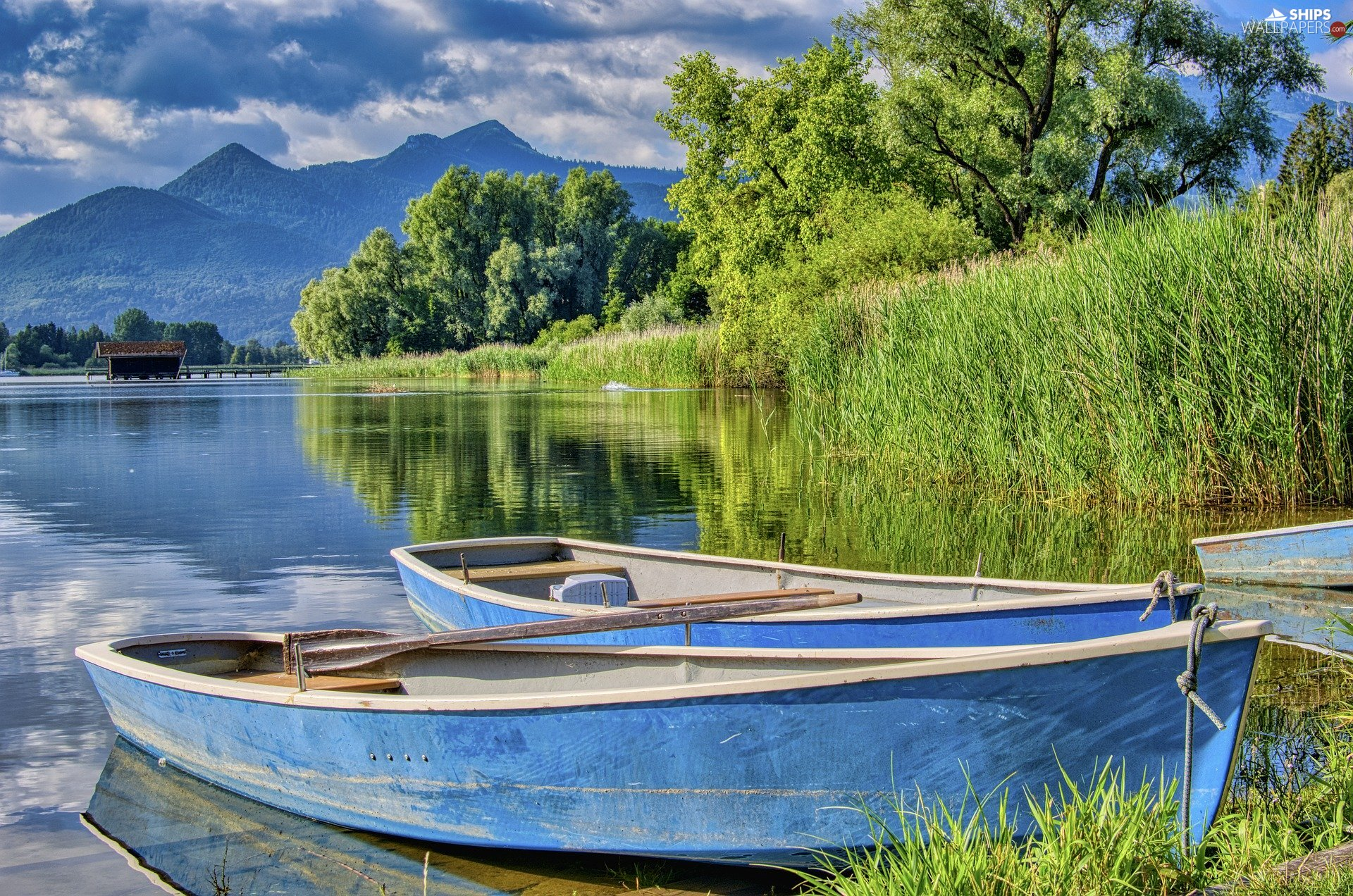 trees, lake, rushes, Mountains, viewes, boats