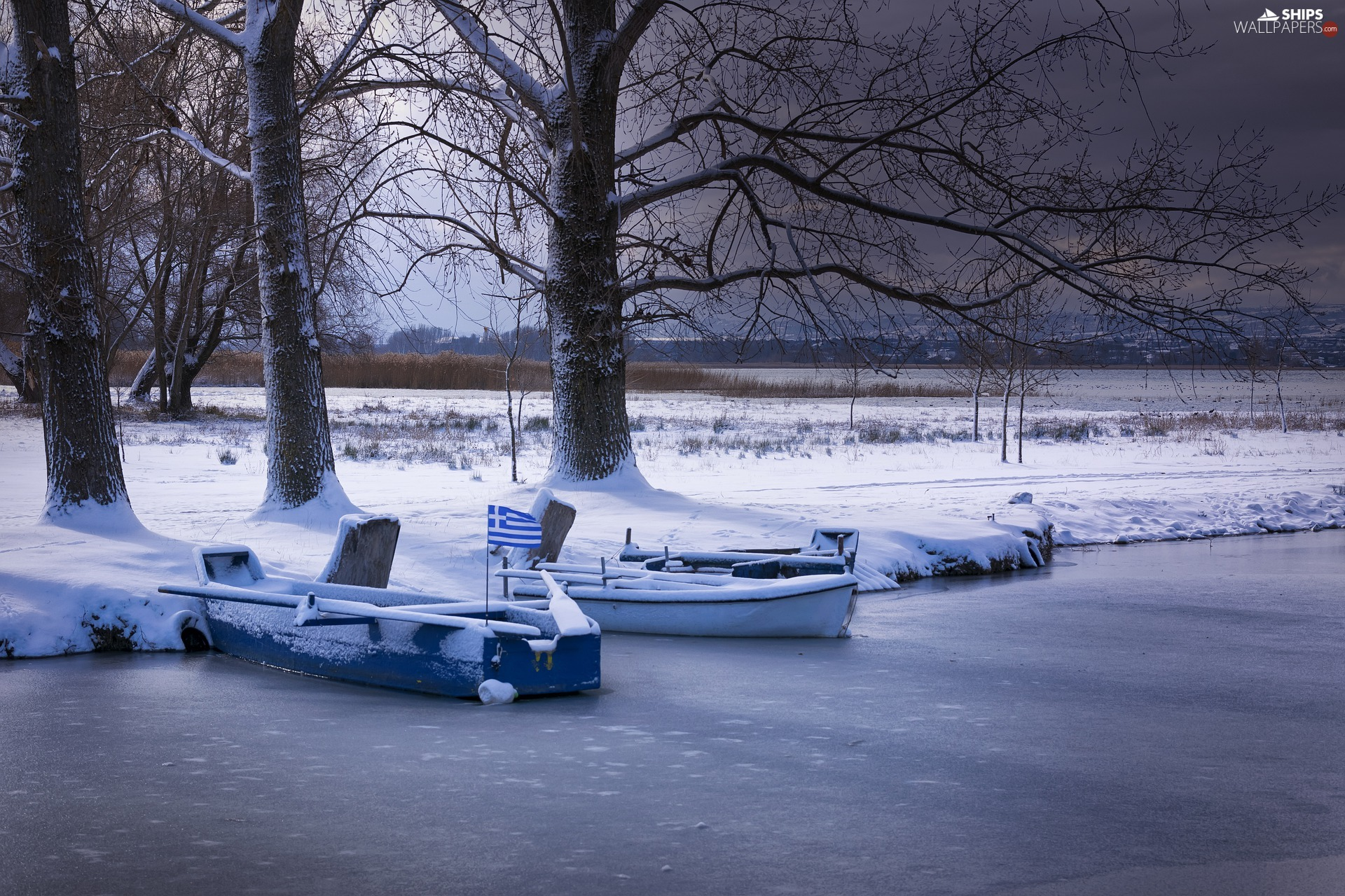 boats, winter, viewes, snow, trees, lake