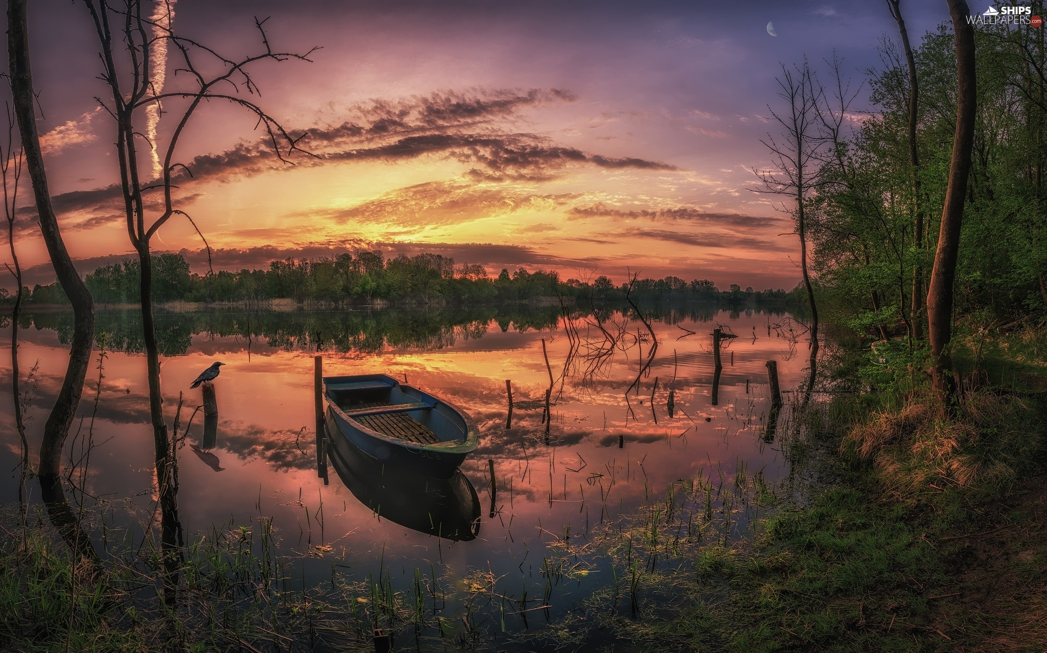 Boat, Great Sunsets, trees, viewes, lake