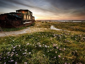 Meadow, wreck, boat