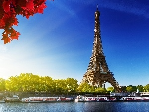 Red, Leaf, Eiffla, Paris, tower